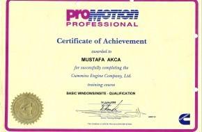 ProMotion Professional
